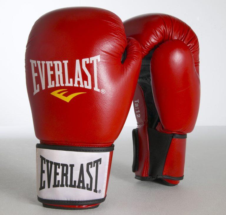 Everlast Boxerské kožené rukavice Moulded