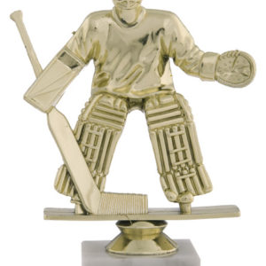 trofej F105                                                            hokej