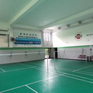 Trisurface                                           badmintonový kurt