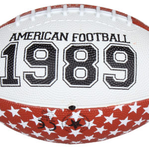 Chicago Mini lopta pre americký futbal
